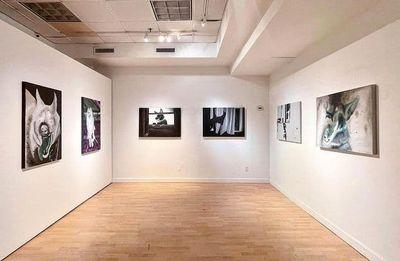 برپایی-نمایشگاه-آثار-افرا-صفا-در-گالری-آرتیفکت-نیویورک